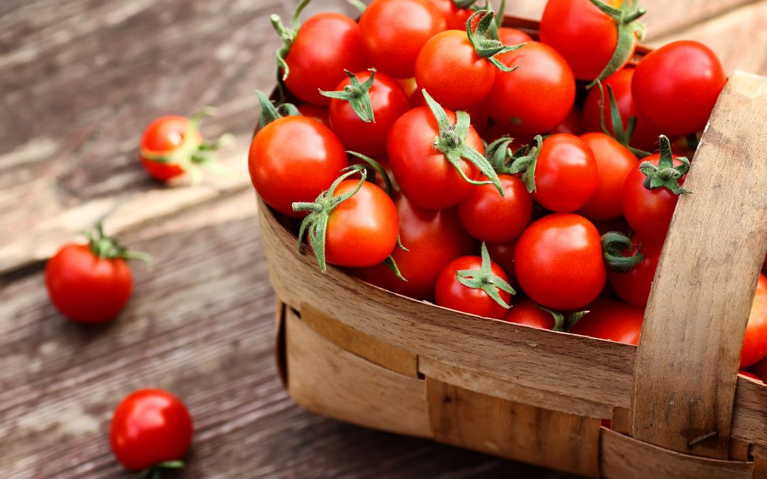 Tomatenverkostung
