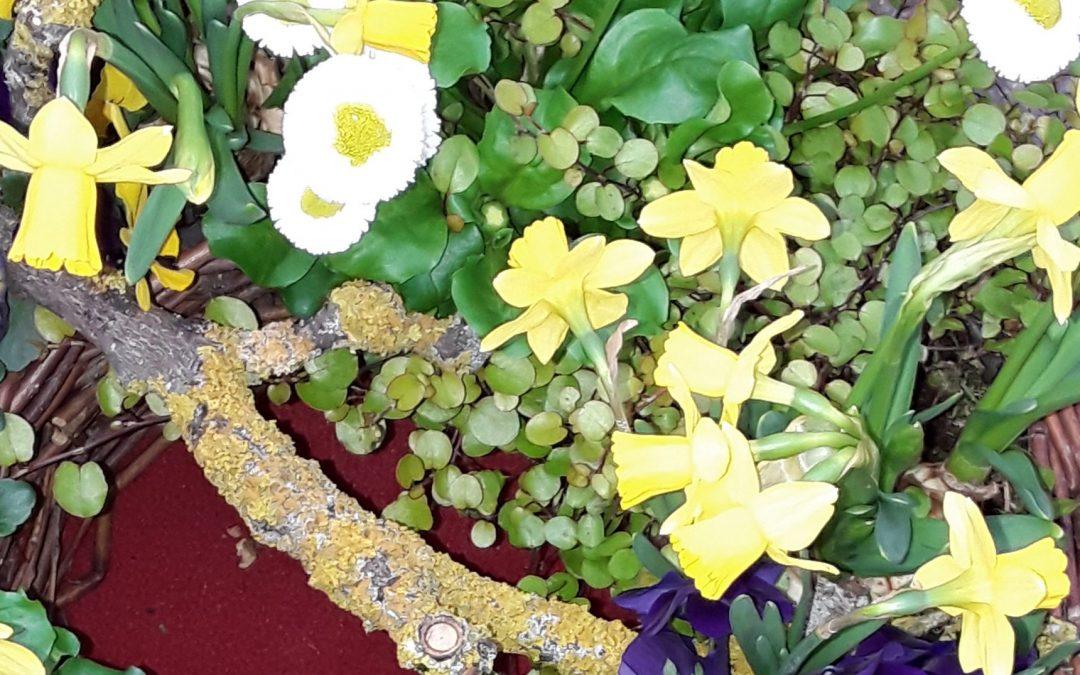 Mit bunten Blumen in den Frühling